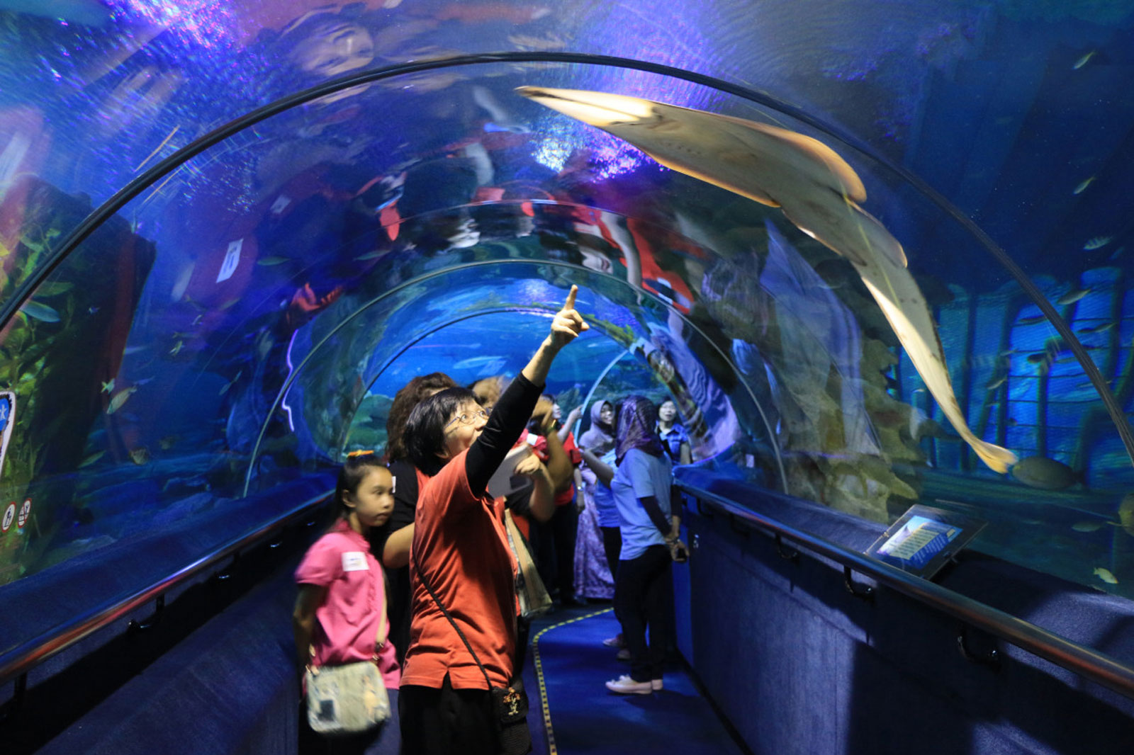 Aquarium Tunnel in Malaysia by Classique Plastics