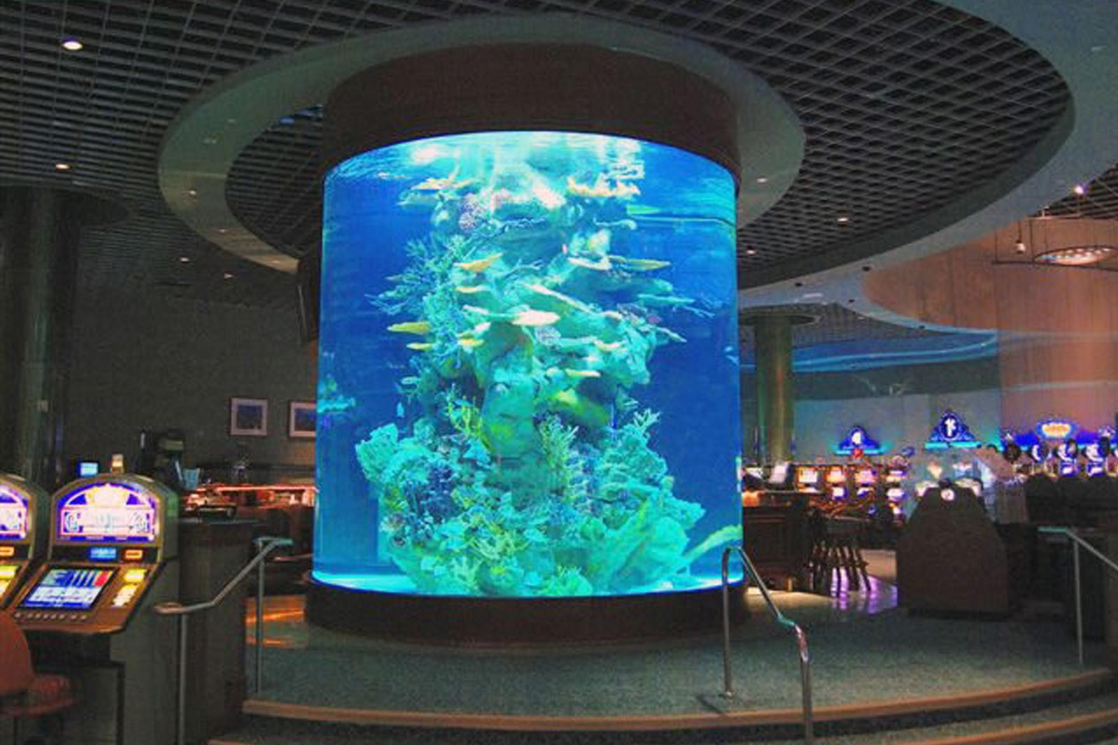 Aquarium Tank Maintenance by Classique Plastics for the Star Casino Australia