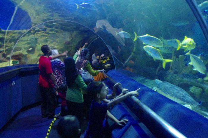 Aquarium Tunnel by Classique Plastics for Underwater World in Kazakhstan