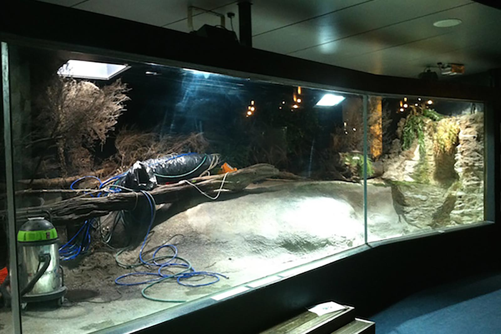 Aquarium Maintenance Service provided by Classique Plastics