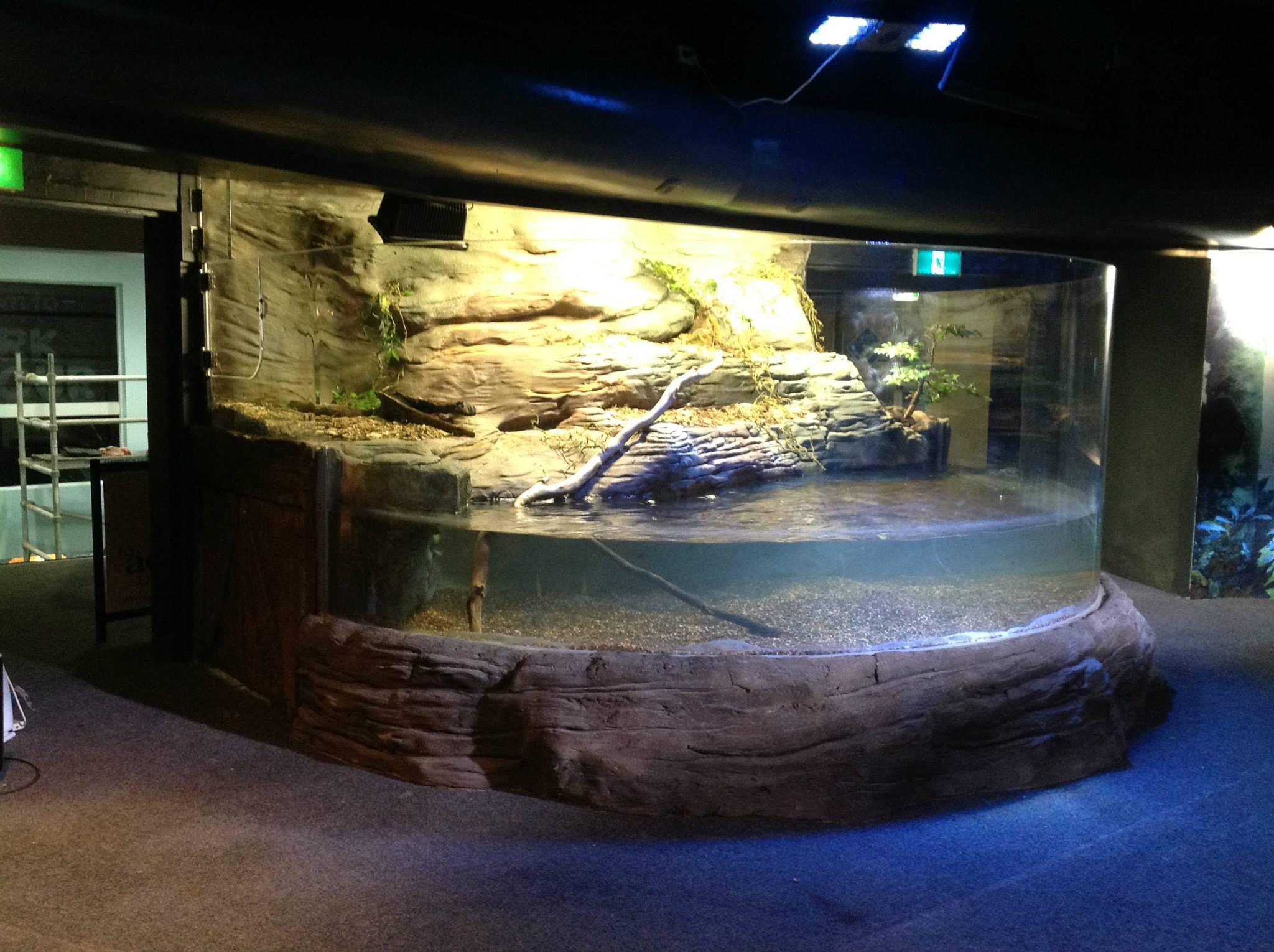 Classique Plastics tank installation
