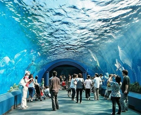 Example of an Aquarium Tunnel at Underwater World Pattaya